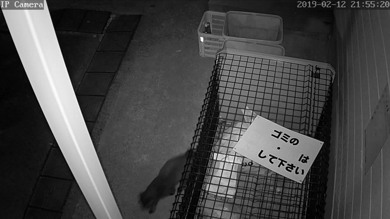 監視 カメラ ボックス カラオケ