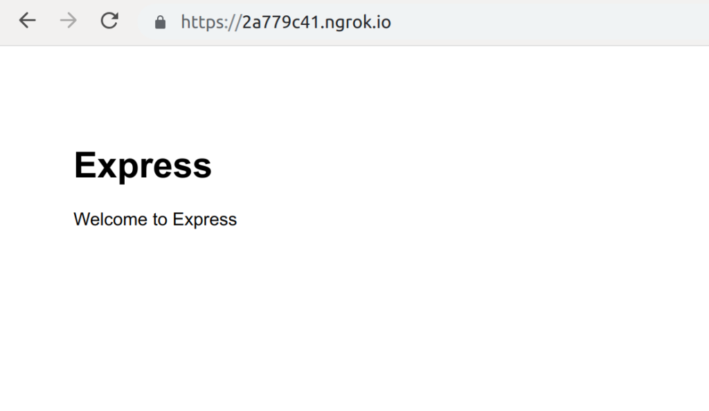 Nodejs + Expressのデフォルトページをngrok経由で表示